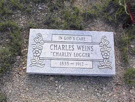WEINS, CHARLES - Chaffee County, Colorado   CHARLES WEINS - Colorado Gravestone Photos