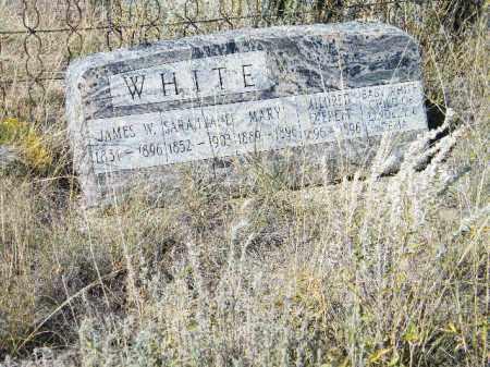 WHITE, JAMES W - Chaffee County, Colorado | JAMES W WHITE - Colorado Gravestone Photos