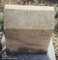 WILLARD, C. DALE - Chaffee County, Colorado | C. DALE WILLARD - Colorado Gravestone Photos