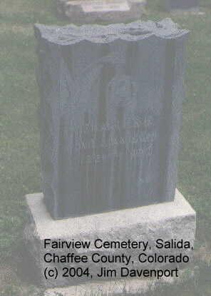 WILLIAMSON, CHARLES E. - Chaffee County, Colorado | CHARLES E. WILLIAMSON - Colorado Gravestone Photos