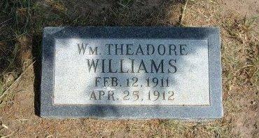 WILLIAMS, WILLIAM THEADORE - Cheyenne County, Colorado | WILLIAM THEADORE WILLIAMS - Colorado Gravestone Photos