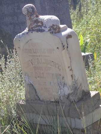 ALBERT, ROY - Clear Creek County, Colorado | ROY ALBERT - Colorado Gravestone Photos