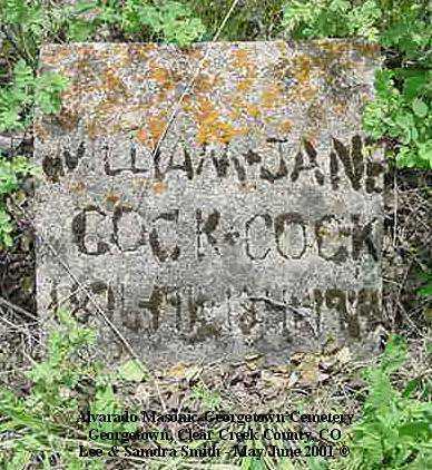 COCK, JANE - Clear Creek County, Colorado | JANE COCK - Colorado Gravestone Photos