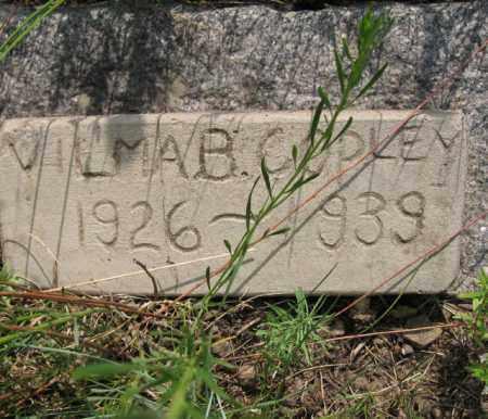 COPLEY, VILMA B. - Clear Creek County, Colorado   VILMA B. COPLEY - Colorado Gravestone Photos