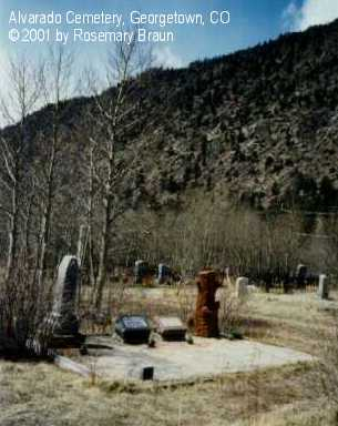 HARDING, FAMILY PLOT - Clear Creek County, Colorado | FAMILY PLOT HARDING - Colorado Gravestone Photos