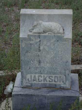 JACKSON, MERRIEL - Conejos County, Colorado | MERRIEL JACKSON - Colorado Gravestone Photos