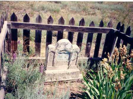 SANCHEZ, JOSE JULIAN - Conejos County, Colorado | JOSE JULIAN SANCHEZ - Colorado Gravestone Photos