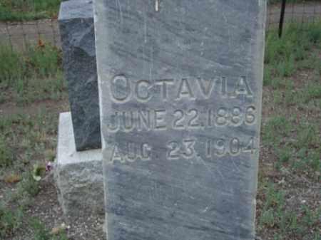 SOWARDS, OCTAVIA - Conejos County, Colorado | OCTAVIA SOWARDS - Colorado Gravestone Photos