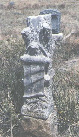 FOSS, JOHN D. - Custer County, Colorado | JOHN D. FOSS - Colorado Gravestone Photos