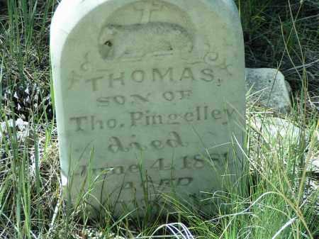 PINGELLEY, THOMAS - Custer County, Colorado | THOMAS PINGELLEY - Colorado Gravestone Photos