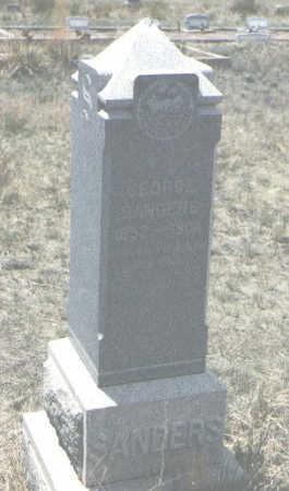 SANDERS, EDWIN E. - Custer County, Colorado | EDWIN E. SANDERS - Colorado Gravestone Photos