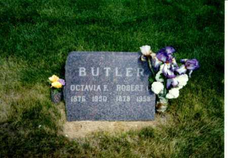 BUTLER, ROBERT - Delta County, Colorado | ROBERT BUTLER - Colorado Gravestone Photos