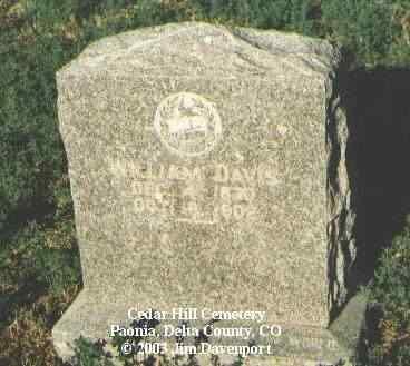 DAVIS, WILLIAM - Delta County, Colorado | WILLIAM DAVIS - Colorado Gravestone Photos