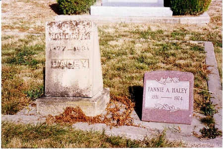 HALEY, FANNIE A. - Delta County, Colorado | FANNIE A. HALEY - Colorado Gravestone Photos