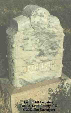 JACKSON, JULIA - Delta County, Colorado | JULIA JACKSON - Colorado Gravestone Photos