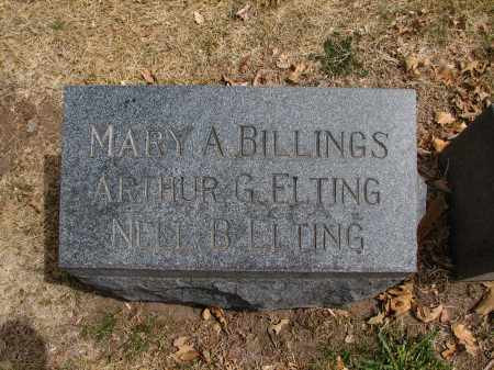 BILLINGS, MARY A. - Denver County, Colorado | MARY A. BILLINGS - Colorado Gravestone Photos