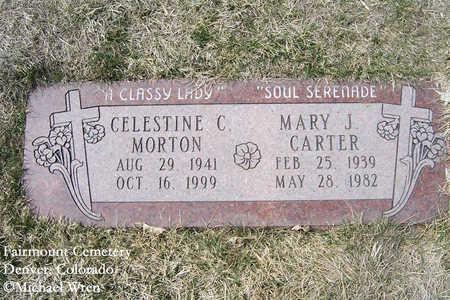 MORTON, CELESTINE C. - Denver County, Colorado | CELESTINE C. MORTON - Colorado Gravestone Photos