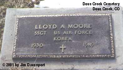 MOORE, LLOYD A. - Dolores County, Colorado | LLOYD A. MOORE - Colorado Gravestone Photos