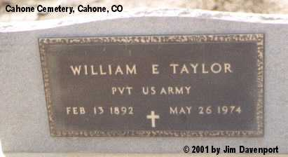 TAYLOR, WILLIAM E. - Dolores County, Colorado | WILLIAM E. TAYLOR - Colorado Gravestone Photos
