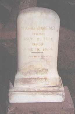 OWENS, DAVID - Douglas County, Colorado | DAVID OWENS - Colorado Gravestone Photos