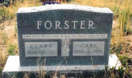 ETTER FORSTER, CLARA - Eagle County, Colorado | CLARA ETTER FORSTER - Colorado Gravestone Photos
