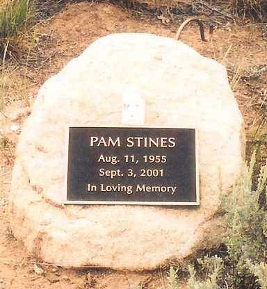 STINES, PAM (DORIS PAMELA) - Eagle County, Colorado | PAM (DORIS PAMELA) STINES - Colorado Gravestone Photos