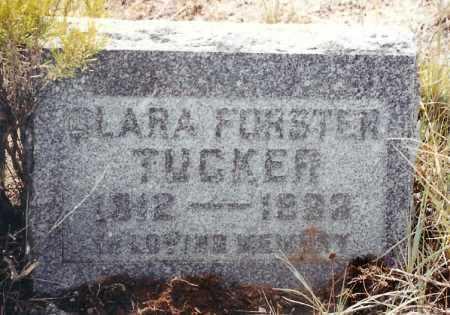 FORSTER TUCKER, CLARA ALICE - Eagle County, Colorado | CLARA ALICE FORSTER TUCKER - Colorado Gravestone Photos