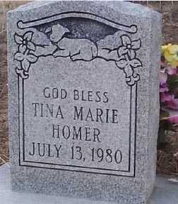 HOMER, TINA MARIE - Elbert County, Colorado | TINA MARIE HOMER - Colorado Gravestone Photos