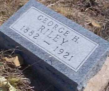 RILEY, GEORGE H. - Elbert County, Colorado | GEORGE H. RILEY - Colorado Gravestone Photos