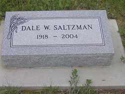 SALTZMAN, DALE W. - Elbert County, Colorado | DALE W. SALTZMAN - Colorado Gravestone Photos