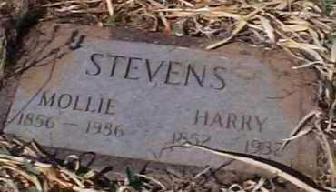 STEVENS, MOLLIE - Elbert County, Colorado | MOLLIE STEVENS - Colorado Gravestone Photos