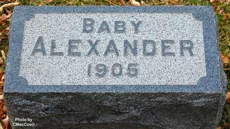 ALEXANDER, BABY - El Paso County, Colorado | BABY ALEXANDER - Colorado Gravestone Photos