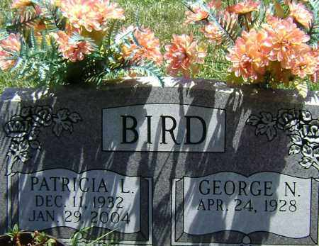 BIRD, PATRICIA L - El Paso County, Colorado | PATRICIA L BIRD - Colorado Gravestone Photos