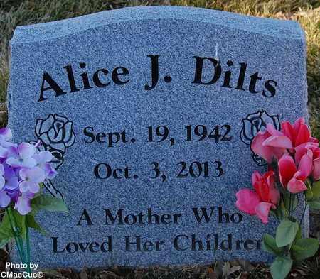 DILTS, ALICE J. - El Paso County, Colorado | ALICE J. DILTS - Colorado Gravestone Photos