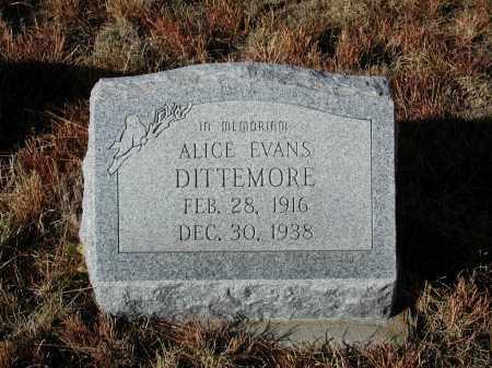 EVANS DITTEMORE, ALICE - El Paso County, Colorado | ALICE EVANS DITTEMORE - Colorado Gravestone Photos