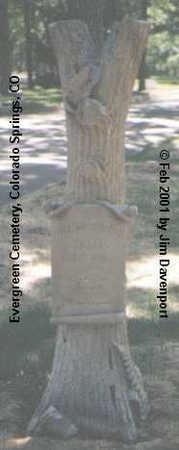 ELLIS, WILLIAM HOWARD - El Paso County, Colorado | WILLIAM HOWARD ELLIS - Colorado Gravestone Photos