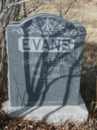 EVANS, HARRY A. - El Paso County, Colorado | HARRY A. EVANS - Colorado Gravestone Photos