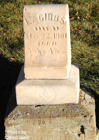 GIBBS, L. - El Paso County, Colorado | L. GIBBS - Colorado Gravestone Photos