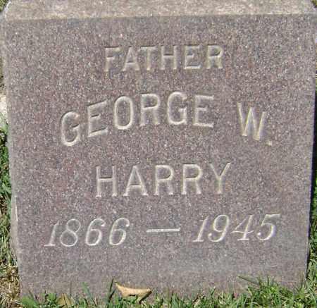 HARRY, GEORGE W - El Paso County, Colorado | GEORGE W HARRY - Colorado Gravestone Photos
