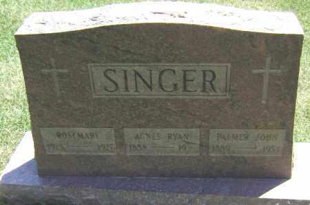 SINGER, PALMER JOHN - El Paso County, Colorado | PALMER JOHN SINGER - Colorado Gravestone Photos