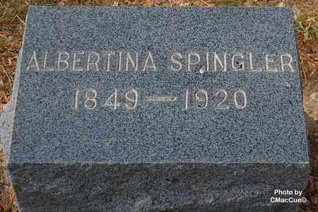 SPINGLER, ALBERTINA - El Paso County, Colorado | ALBERTINA SPINGLER - Colorado Gravestone Photos