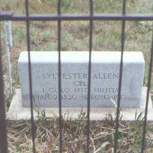 ALLEN, SYLVESTER - Fremont County, Colorado | SYLVESTER ALLEN - Colorado Gravestone Photos