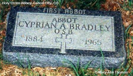 BRADLEY, CYPRIAN A. - Fremont County, Colorado | CYPRIAN A. BRADLEY - Colorado Gravestone Photos
