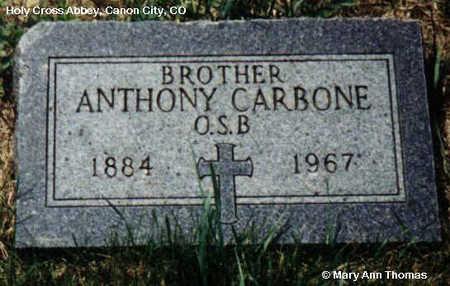 CARBONE, ANTHONY - Fremont County, Colorado   ANTHONY CARBONE - Colorado Gravestone Photos