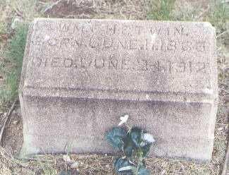CHETWIN, WM. - Fremont County, Colorado | WM. CHETWIN - Colorado Gravestone Photos