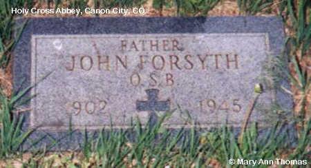 FORSYTH, JOHN - Fremont County, Colorado | JOHN FORSYTH - Colorado Gravestone Photos