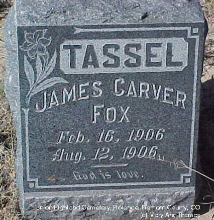 FOX, JAMES CARVER - Fremont County, Colorado | JAMES CARVER FOX - Colorado Gravestone Photos
