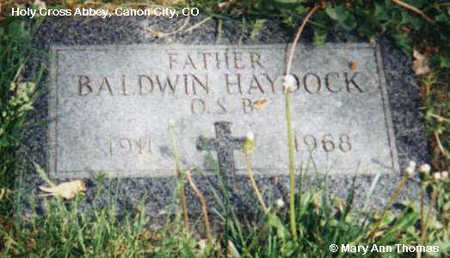 HAYDOCK, BALDWIN - Fremont County, Colorado | BALDWIN HAYDOCK - Colorado Gravestone Photos