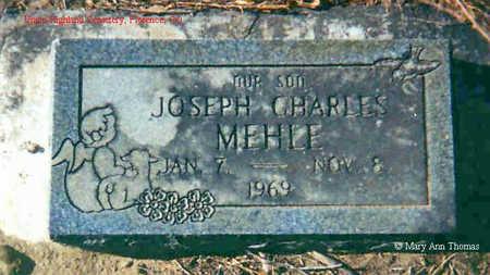 MEHLE, JOSEPH CHARLES - Fremont County, Colorado | JOSEPH CHARLES MEHLE - Colorado Gravestone Photos