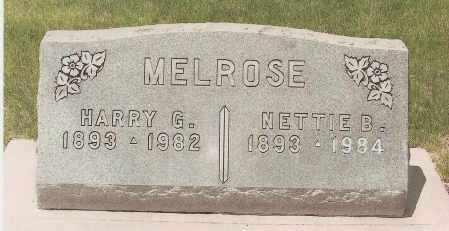 MELROSE, HARRY GUY - Fremont County, Colorado | HARRY GUY MELROSE - Colorado Gravestone Photos